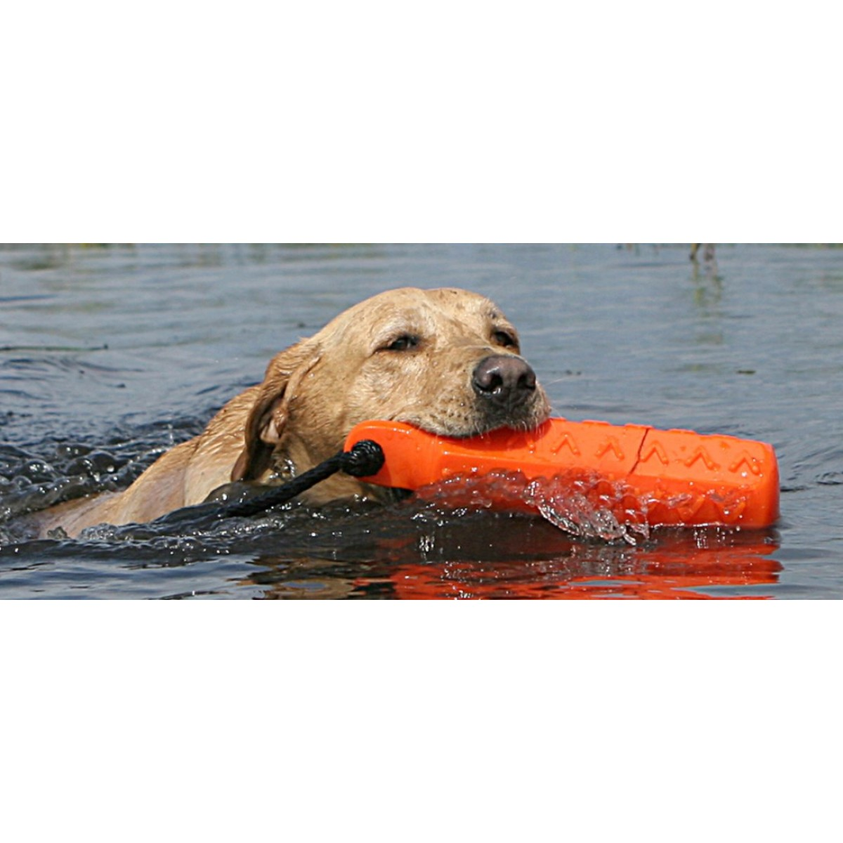 Avery Sporting Dog Hexa Bumper Dog Training Bumper Dummy